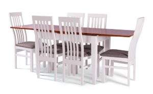 SHAHAR table + MODERN chair (SET)